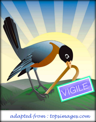 1-early bird Vigile
