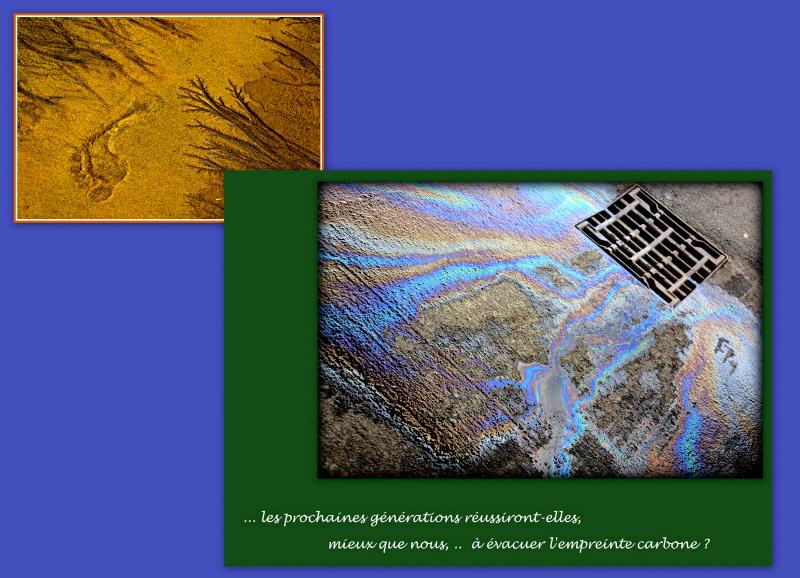 05-2- Poitiers écologique  copie4
